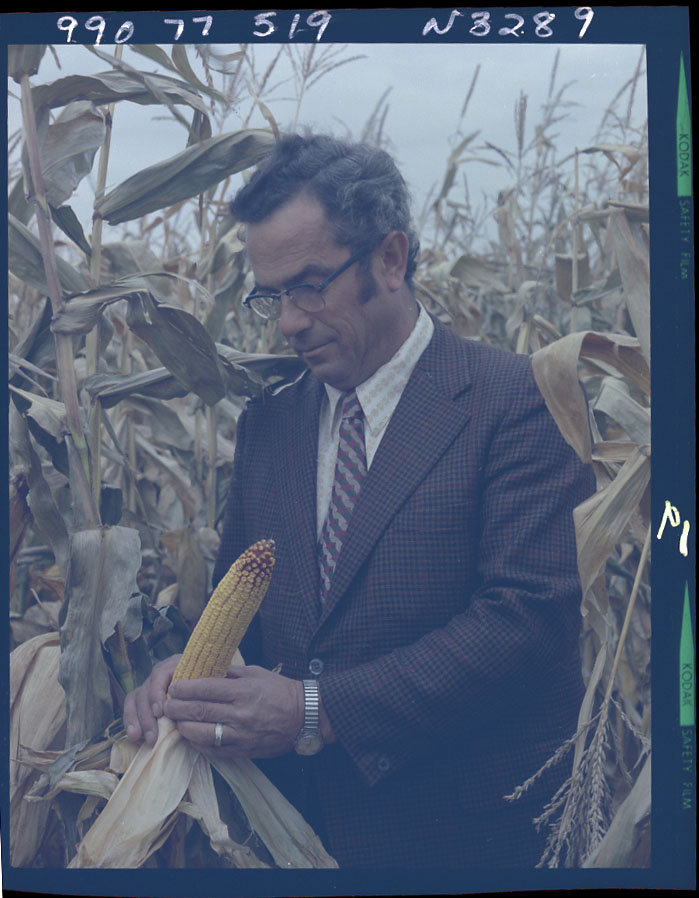 Agricultural Crops_Corn_1990.77.519_date1972